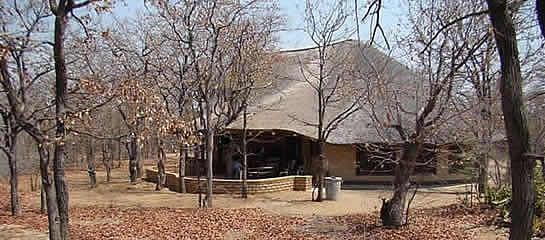 PimUju Big 5 Chalets in the Timbavati Nature Reserve offers Game Lodge Accommodation in Limpopo with Big 5 Safaris in Limpopo